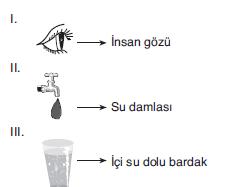 LYS Optik Karma Sorular Test 4